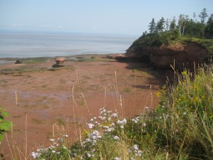 The Bay of Fundy is a bay on the Atlantic coast of North America, on the northeast end of the Gulf of Maine between the Canadian provinces of New Brunswick and Nova Scotia.