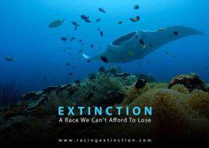 racing_extinction